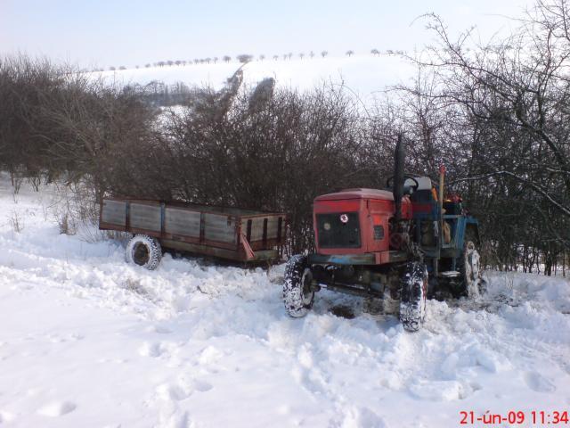 DSC2537