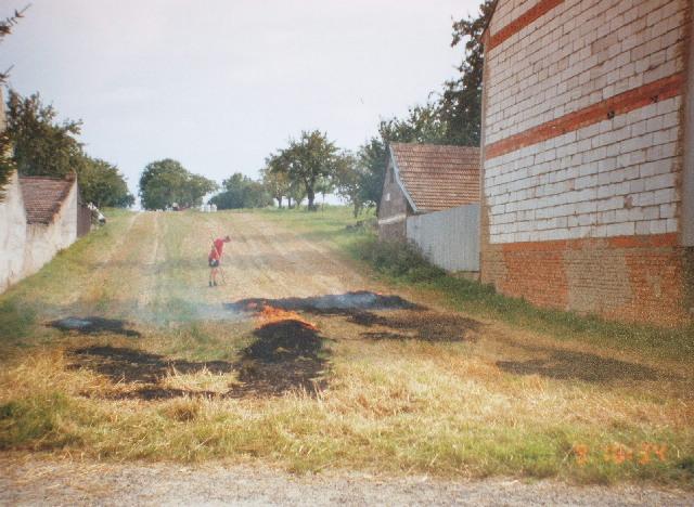 Pohled na pozemek, srpen 2002