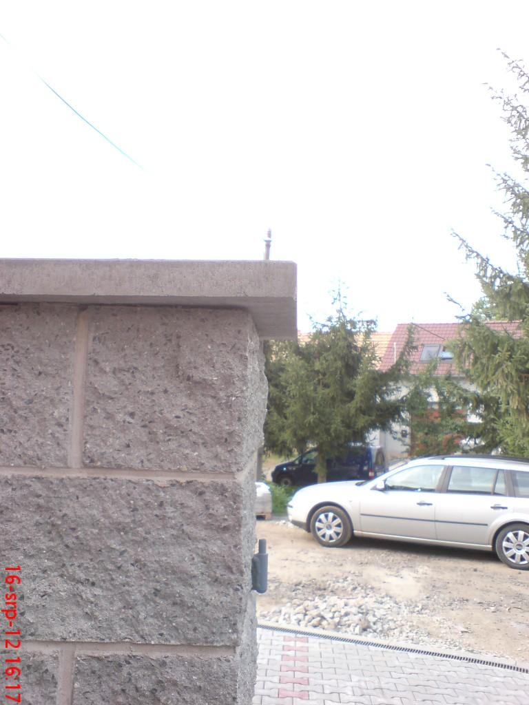 DSC07221
